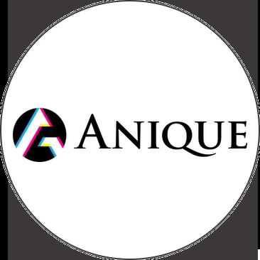 Anique Inc.